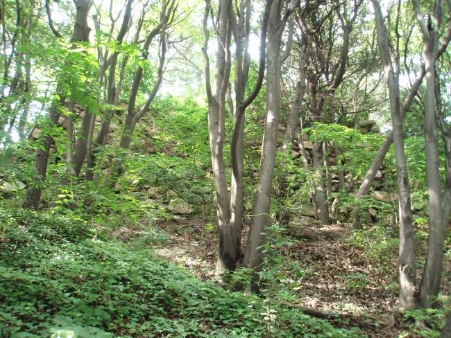 子城台の石垣2