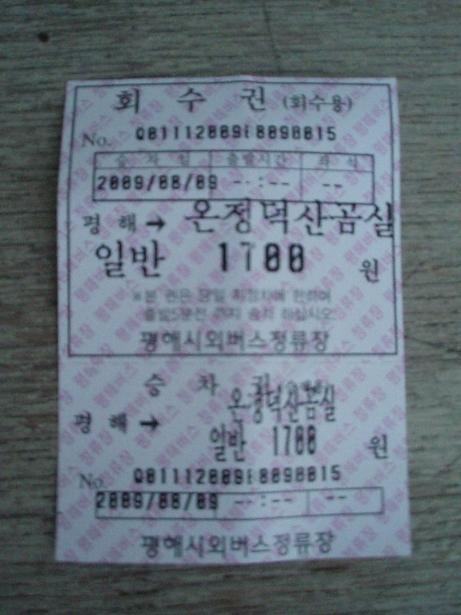 白岩温泉行きのバスチケット