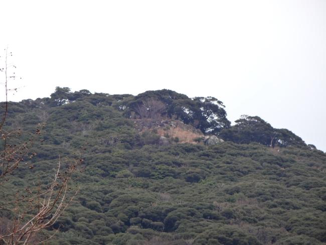 清水山城石垣望遠